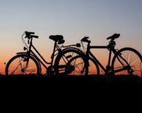 Letní cyklopobyt na Třeboňsku